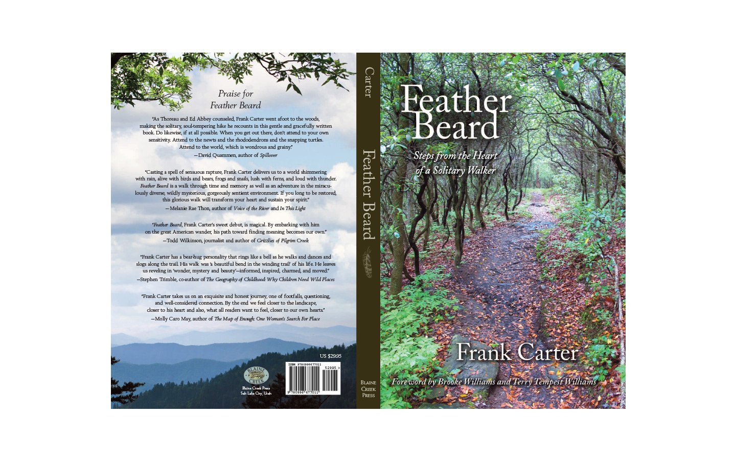 Feather Beard cover